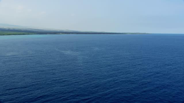 aerial seascape view old volcanic lava flows hawaii - ハワイ島点の映像素材/bロール