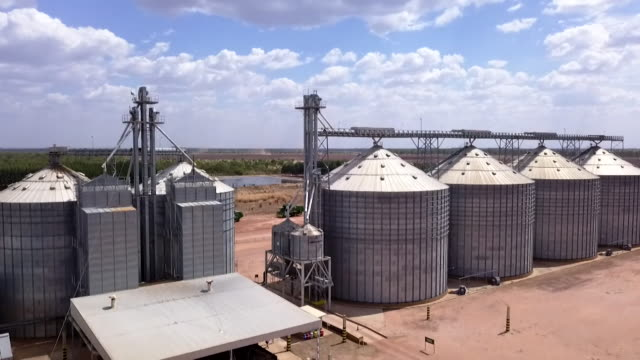 aerial sequence showing largescale soybean production at a farm in brazil whose owners take care to farm on land that has already been spoiled amid... - monoculture stock videos & royalty-free footage
