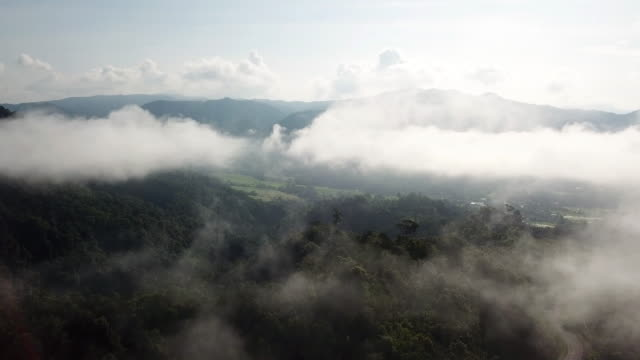aerial shot above the clouds and forest with sunrise and blue sky - heaven stock videos & royalty-free footage
