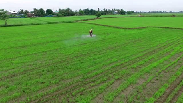 aerial shot: farmer spraying pesticides - spraying stock videos and b-roll footage
