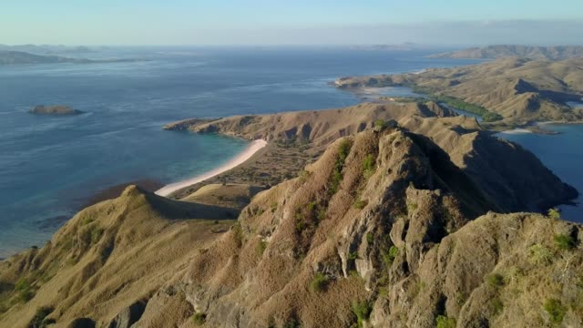 aerial shot from padar island to pink beach. - insel komodo stock-videos und b-roll-filmmaterial