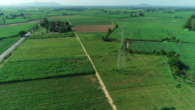 aerial shot high voltage pole, on outdoor rice fields landscape - wire stock videos & royalty-free footage