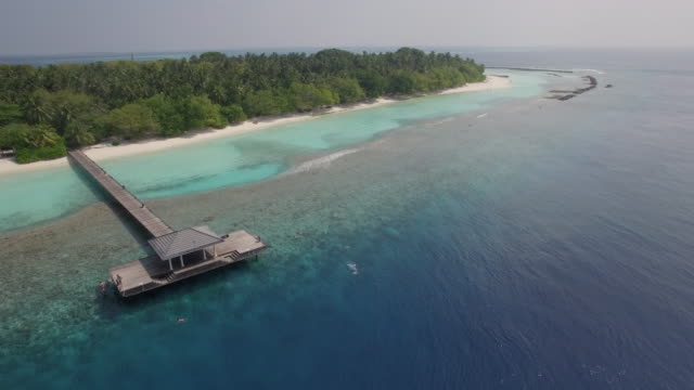 Aerial shot Jetty, Beach and Coral Reef