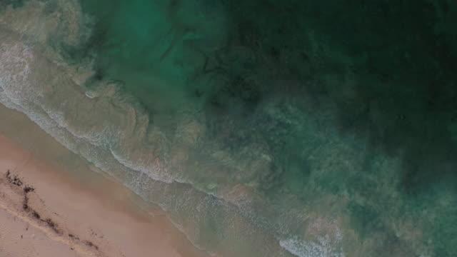 Aerial shot looking down at waves crashing on beach