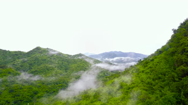 Aerial Shot : Morning Mist at Tropical Rain forest, Thailand.