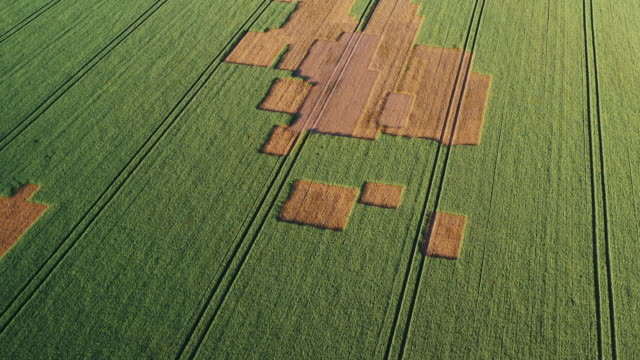 aerial shot moving towards strange patterns in a field, england, united kingdom - staffordshire england stock videos & royalty-free footage