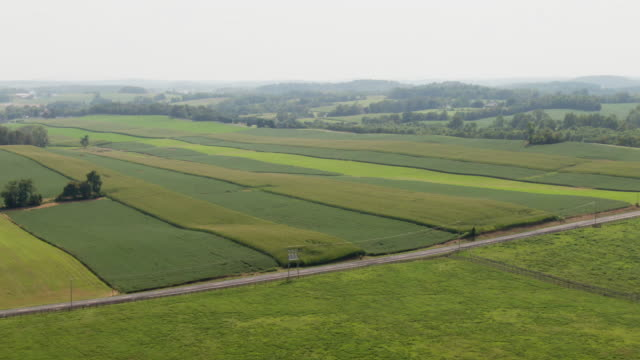 aerial shot of a car driving along a road cutting through agricultural farmland (soybean fields) in maryland - general view stock videos & royalty-free footage