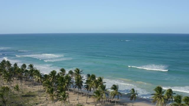ripresa aerea di un resort costiero con spiaggia in una giornata di sole - sunny video stock e b–roll