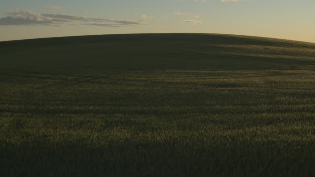 aerial shot of a field at sunset - twilight stock videos & royalty-free footage
