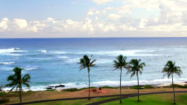 aerial shot of a golf course on the ocean - turtle bay hawaii stock videos and b-roll footage