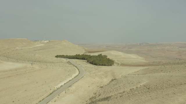 aerial shot of  a grove in the negev - negev stock videos & royalty-free footage