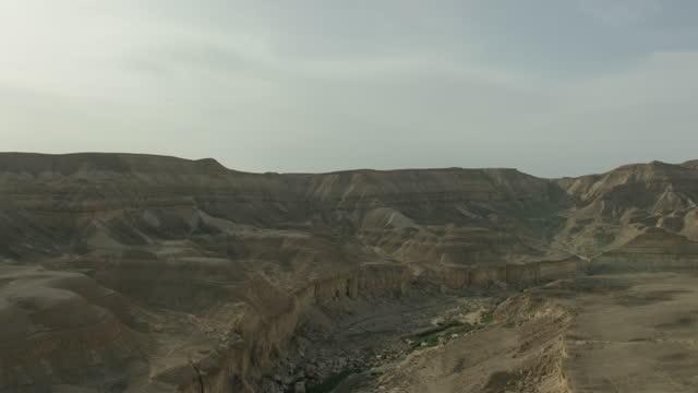 aerial shot of a grove in the negev - ネゲブ点の映像素材/bロール