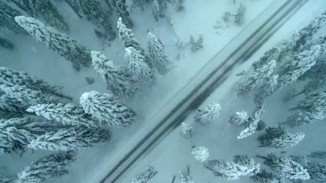 stockvideo's en b-roll-footage met aerial shot of a misty winter road - sneeuwstorm