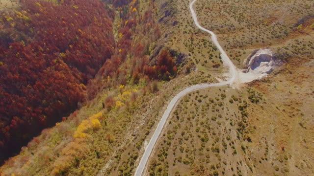 vídeos de stock, filmes e b-roll de tiro aéreo de uma montanha no outono. ponto de vista drone, montanha na sérvia na cor outono. - pinhal