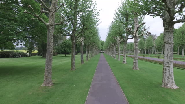 Aerial shot of a sidewalk paved with trees in the Aisne-Marne American Cemetery