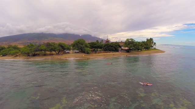 aerial shot of a tropical beach with peaceful shoreline, a surfer paddling out in maui, hi - hawaiian culture stock videos & royalty-free footage