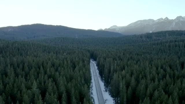 vídeos de stock e filmes b-roll de aerial shot of a winter road - coniferous