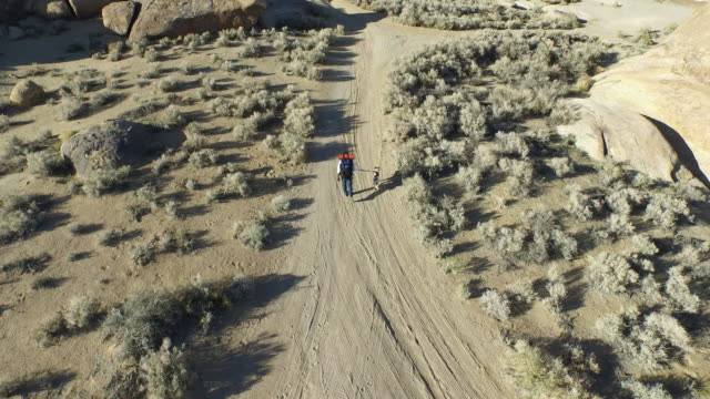 aerial shot of a young man backpacking with his dog on a dirt road in a mountainous desert. - elevated view stock videos & royalty-free footage