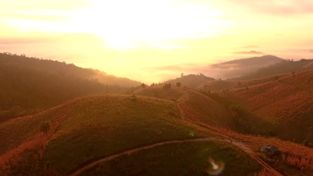 aerial shot of beautiful sunrise rainforest. - valley stock videos & royalty-free footage