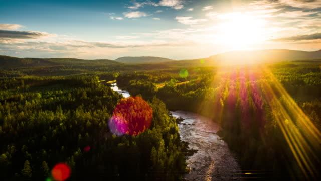 Vue aérienne de la forêt boréale, en Suède