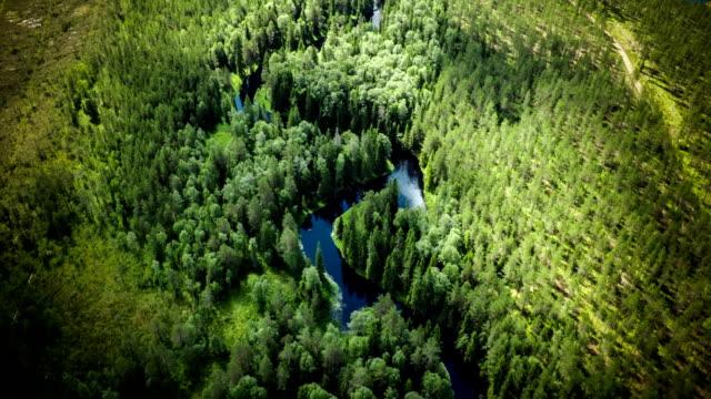 Toma aérea del bosque Boreal en Suecia con Pasee por
