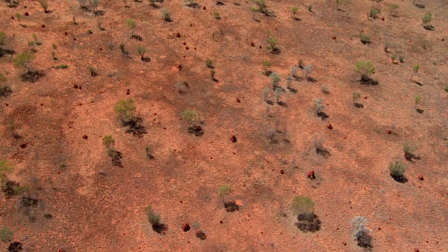 HD: Aerial Shot Of Bungle Bungles Landscape