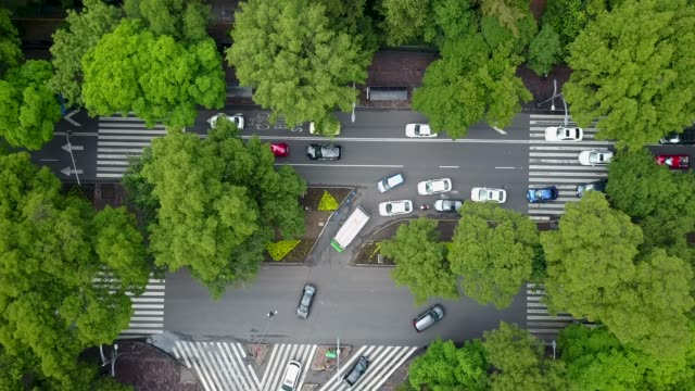 aerial shot of cars in mexico city - independence stock videos & royalty-free footage