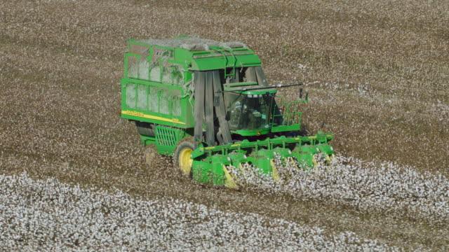 vídeos y material grabado en eventos de stock de aerial shot of cotton harvester on farm - cotton