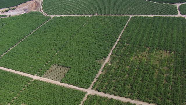 aerial shot of crop fields in central valley - 北半球点の映像素材/bロール
