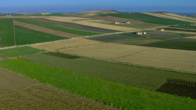 aerial shot of cultivated farmland - patchwork landscape stock videos and b-roll footage