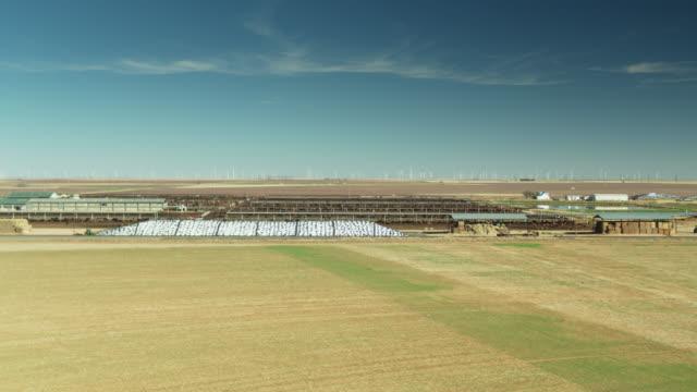 vídeos de stock e filmes b-roll de aerial shot of dairy farm with wind turbines in background - animal doméstico