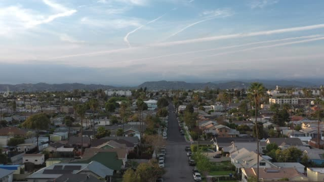 aerial shot of downtown los angeles and west la - palm tree stock videos & royalty-free footage