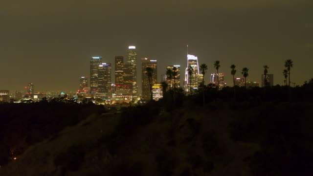 aerial shot of downtown los angeles at night with palm trees - district stock videos & royalty-free footage
