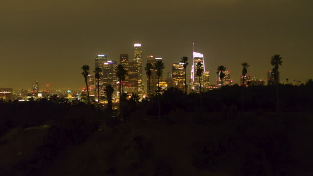 aerial shot of downtown los angeles at night with palm trees - city of los angeles stock videos & royalty-free footage