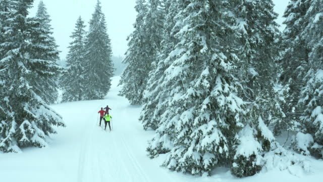 aerial shot of family on a cross country skiing track - three people stock videos & royalty-free footage