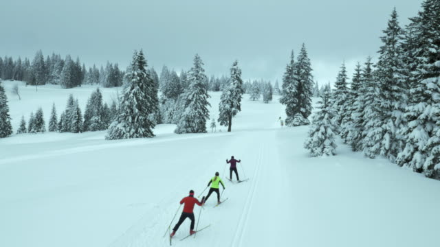 Aerial shot of family skating along cross country skiing track