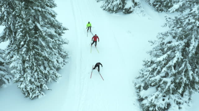 aerial shot of family skiing on a cross country track - three people stock videos & royalty-free footage