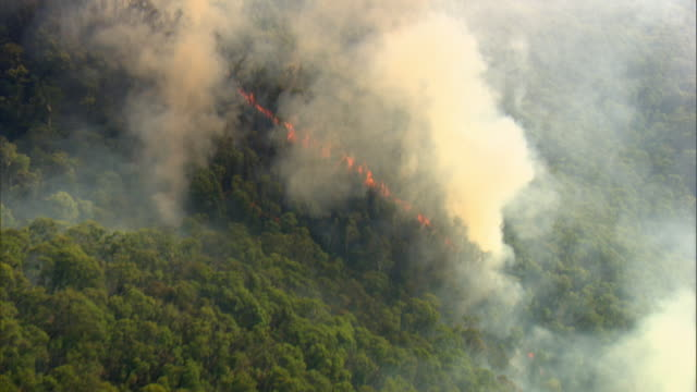 stockvideo's en b-roll-footage met aerial shot of fires blazing across the forested hills of new south wales. - vernieling