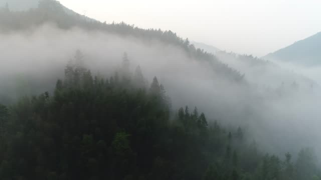 aerial shot of fog over forested mountainside in guilin,china - fog stock videos & royalty-free footage