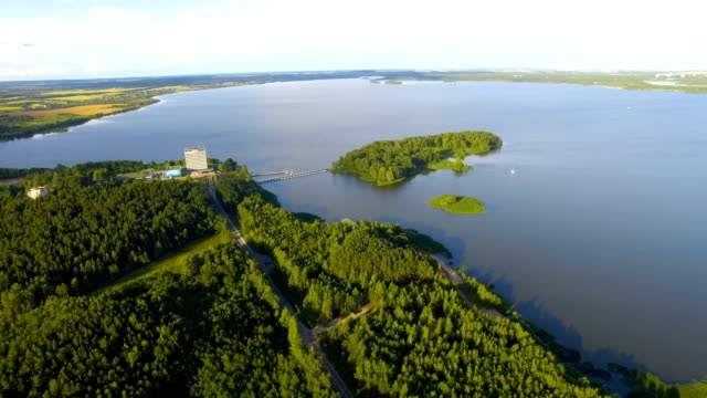Aerial shot of forest and lake