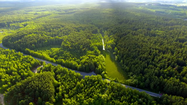 aerial shot of forest and lake - belarus stock videos & royalty-free footage