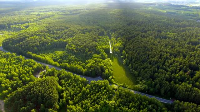 vídeos de stock, filmes e b-roll de vista aérea da floresta e do lago - bielorrússia
