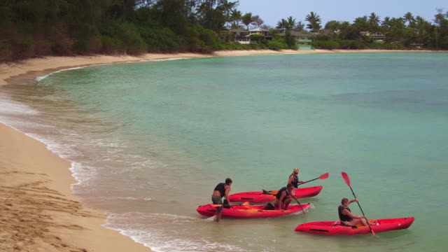 vidéos et rushes de aerial shot of four people getting in their kayaks on the shore - turtle bay oahu