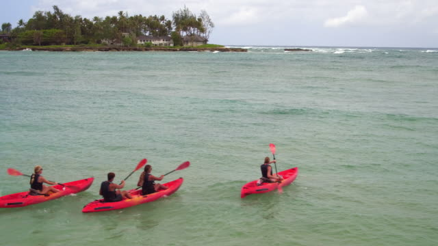 aerial shot of four people paddling out into the ocean in kayaks - kahuku stock videos & royalty-free footage