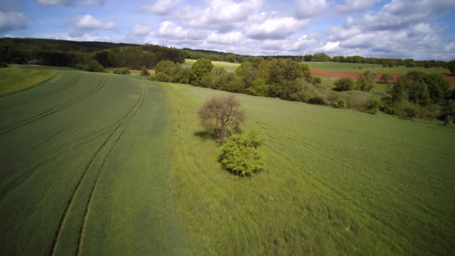 aerial shot of green crop fields with forested trees in mixed farmland