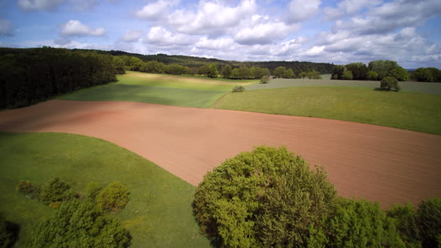 aerial shot of green crop, ploughed and canola fields with forested tree meadows in mixed farmland