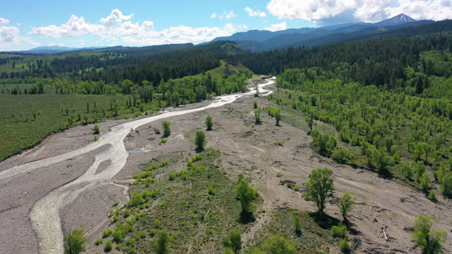 aerial shot of green trees by river flowing at national park, drone flying forward towards mountains against sky on sunny day - grand teton national park, wyoming - grand teton national park stock videos & royalty-free footage