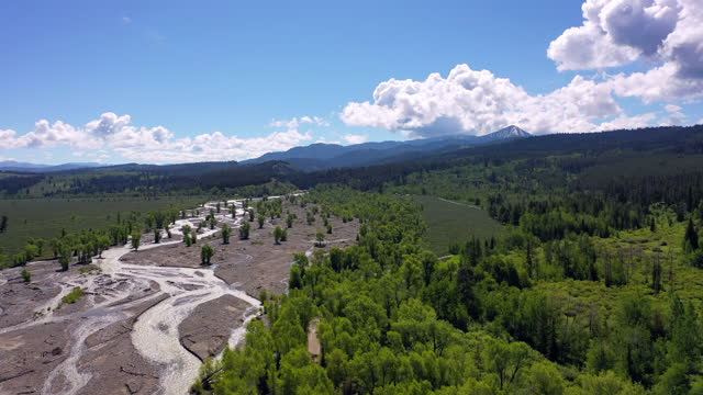 aerial shot of green trees by river flowing at national park, drone ascending over forest near mountains against sky - grand teton national park, wyoming - grand teton national park stock videos & royalty-free footage