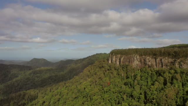 aerial shot of green trees by rocky cliff in forest against sky, drone flying forward over springbrook national park on sunny day - national park stock videos & royalty-free footage