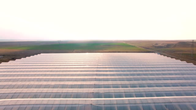 aerial shot of greenhouse on field exterior - greenhouse stock videos & royalty-free footage